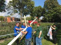 Medewerkers van het Universitair Medisch Centrum Utrecht gingen aan de slag bij maatschappelijke organisaties in De Bilt en Zeist: 'DIT doen we samen'.