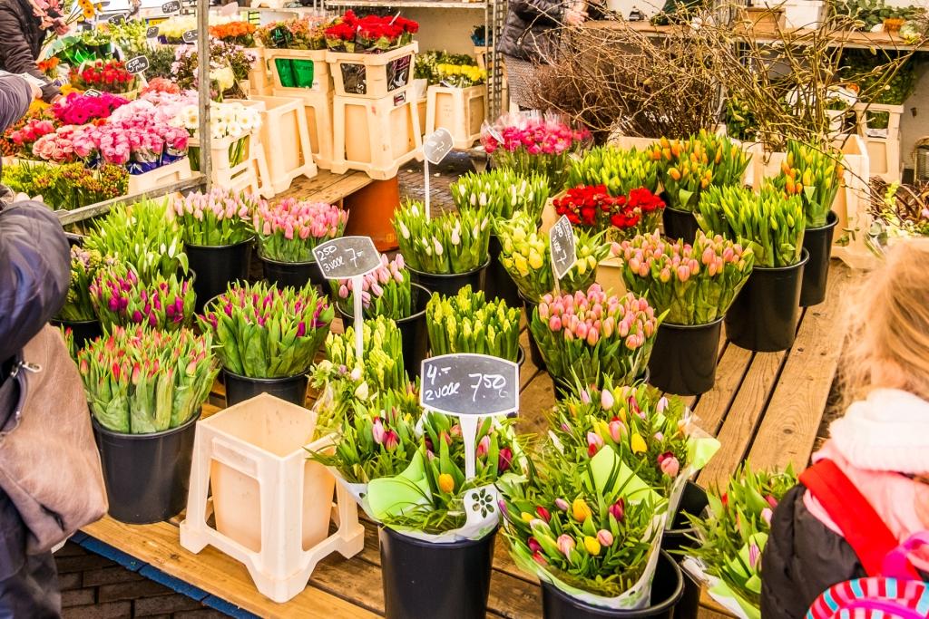 Samen voor De Bilt organiseert Paasactie met een bloemetje voor bewoners in Biltse zorginstellingen (Foto: © Joyce Reimus - HLP Images)
