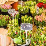 Samen voor De Bilt organiseert Paasactie met een bloemetje voor ouderen